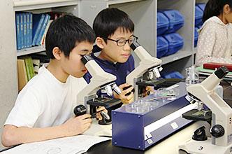顕微鏡でしか見られない世界がある。それを知ったとき、子どもたちの目はキラキラと輝く。